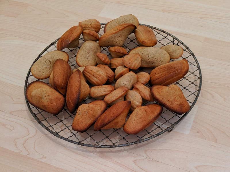 Gewürz-Madeleines – Madeleines aux trois épices