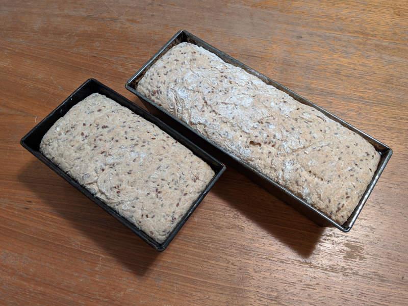 Brot backen Teig aufgegangen