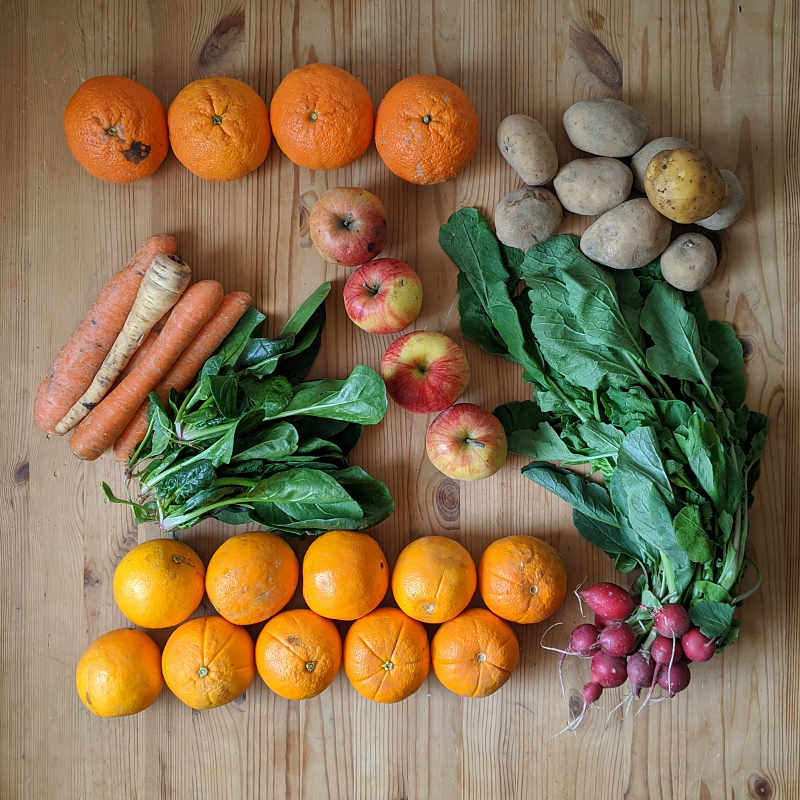 Gemüsekiste mit Radieschen